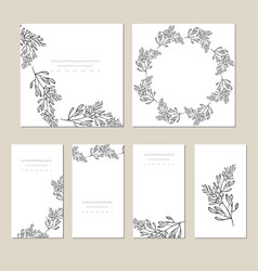 botanic card with wild flowers leaves spring vector image