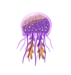 cartoon purple jellyfish flat vector image
