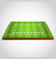 Clear green rugby or soccer field vector