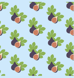 fig fruit pattern vector image