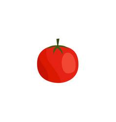 Flat tomato icon vector