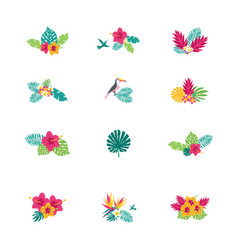 Floral paradise hand drawn tropical bouquets vector