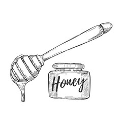 honey jar and stick freehand pencil drawing vector image