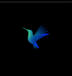 hummingbird color transparent logo vector image