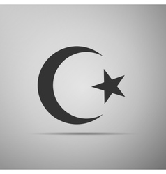Islam symbol icon on grey background vector