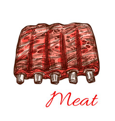 Pork or mutton fresh ribs meat sketch icon vector