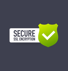 Secure connection icon isolated on white vector