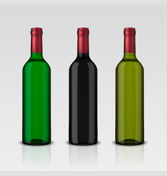 set 3 realistic bottles wine without vector image