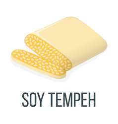 Soy tempeh healthy food style concept icon and vector
