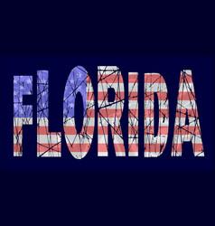 usa stars and stripes flag florida vector image