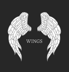 Wings image vector