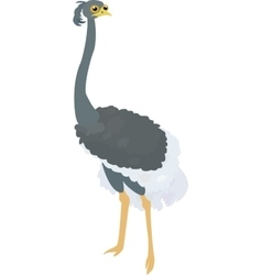 Funny cartoon ostrich isolated on white vector image
