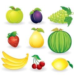 ripe fruits set vector image vector image