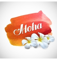 Aloha label with exotic frangipani flowers vector