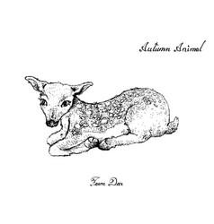 Autumn animal hand drawn fawn deer isolated vector