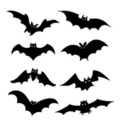 bat bird animal silhouette black icon vector image