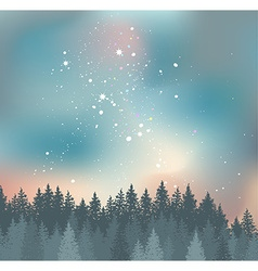 Forest and Night sky with stars background Space vector
