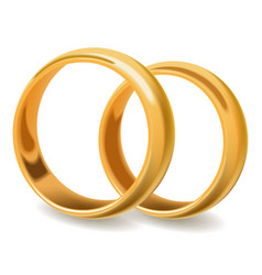 Gold shiny pair of wedding rings stand on ribs vector