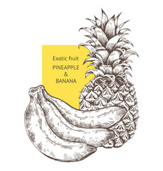 pineapple banana fruit hand drawn sketch vector image