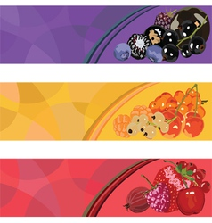 three banners with berries of different colors vector image
