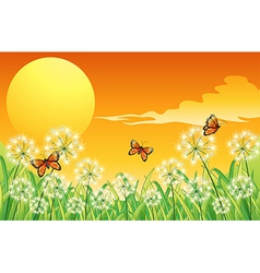 A sunset scenery with three orange butterflies vector