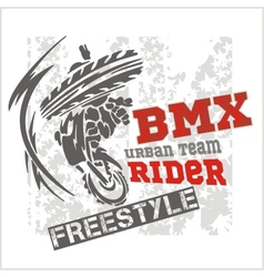 BMX rider - urban team design vector
