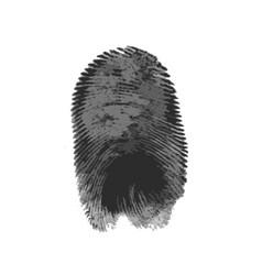 fingerprint icon silhouette on white background vector image