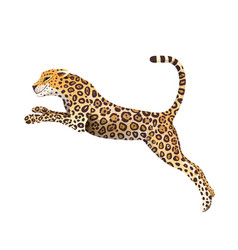 Jumping jaguar clipart big cheetah cat cartoon vector