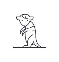 meerkat line icon concept meerkat linear vector image