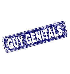 Scratched guy genitals framed rounded rectangle vector
