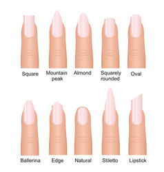 Set different nails shape vector