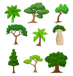 Tree cartoon collections vector