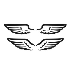 wings icon design template isolated vector image