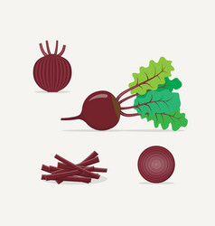 beet flat icon vector image vector image