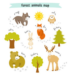 forest animals map with trees and footprints vector image vector image