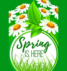 spring is here flower frame border design vector image vector image