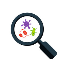 Colorful germs and magnifying glass microscopic vector