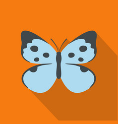 decorative butterfly icon flat style vector image