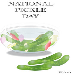 national pickle day sign and symbol vector image