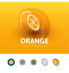 Orange icon in different style vector image