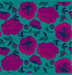 purple peony flower pattern vector image