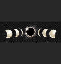 set moon phases vector image