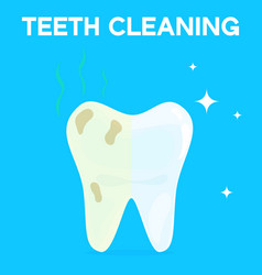 teeth cleaning whitening or bleaching vector image