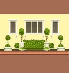 Topiary garden plants vector