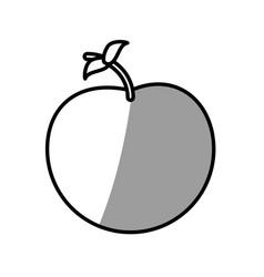 Apple fruit picnic shadow vector