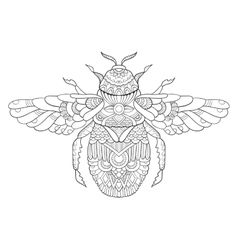 Bumblebee coloring book for adults vector image vector image