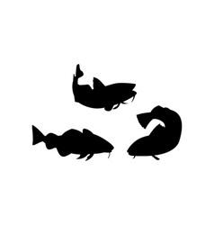 Atlantic codfish retro vector