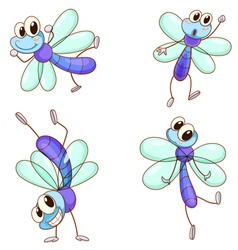 Cute Dragonflies vector image