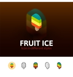 Fruit ice icon in different style vector image