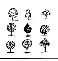 hand draw tree icon design vector image